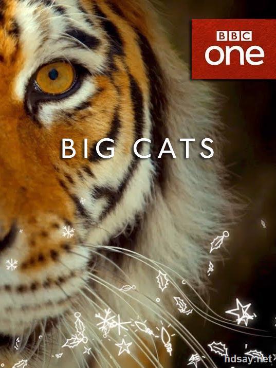 大猫 第一季全