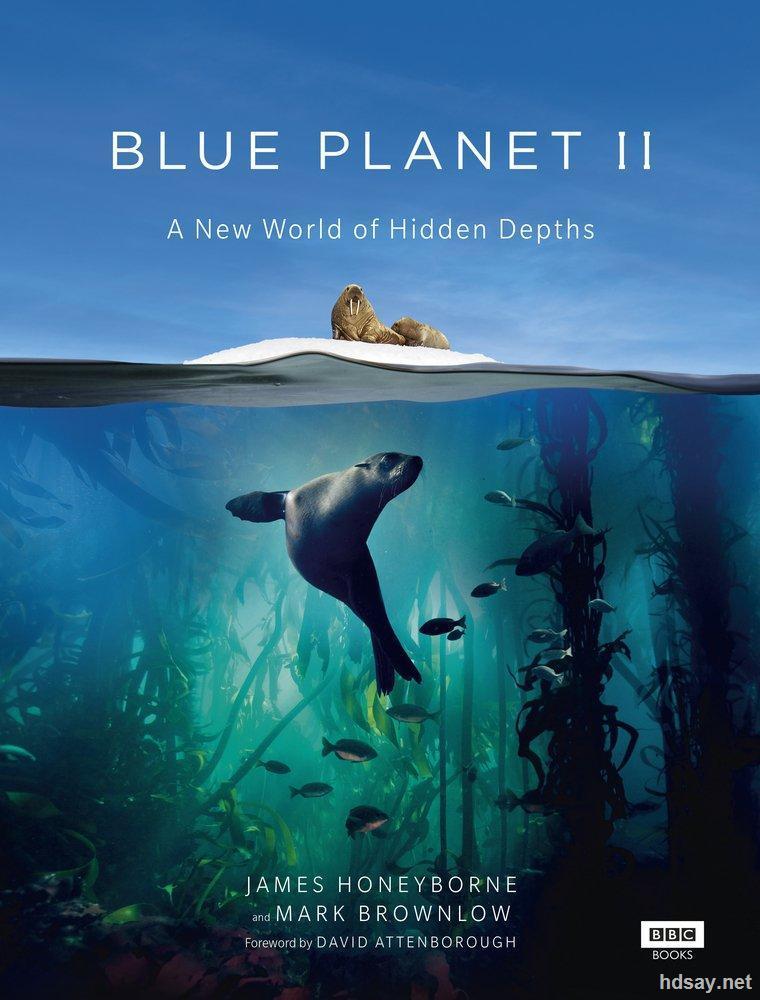 纪录片:蓝色星球2